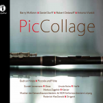 Gudrun Hinze und Kollegen: PicCollage. CD-Cover