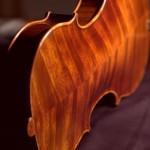 Boden einer Geige von Jean Severin, Weimar