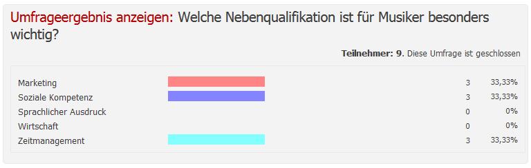 Umfrage Nebenqualifikationen